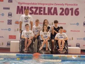 muszelka2_start